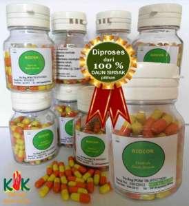 Jual Obat Kanker Herbal Murah
